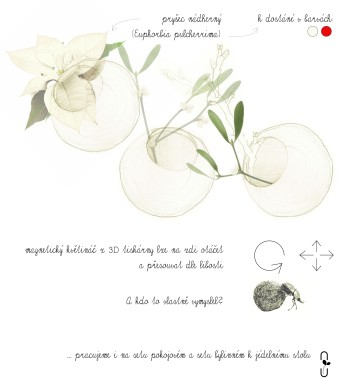 3D_kvetinace